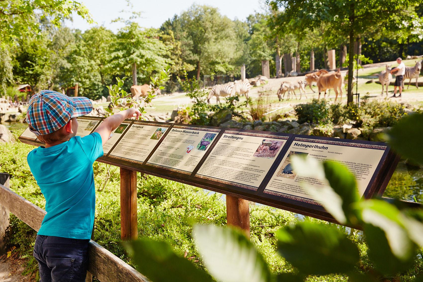 Allwetterzoo Westfalisches Pferdemuseum Munster